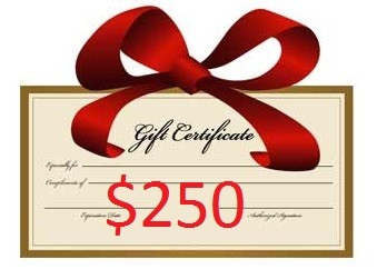 $250 Gift Certificate (save $25)